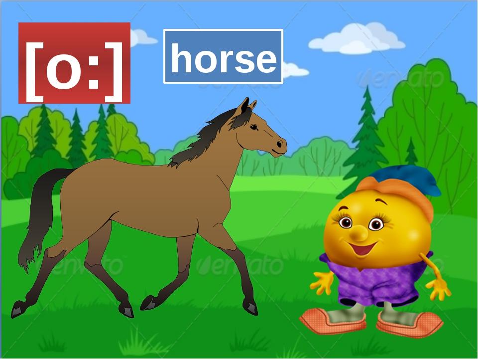 [o:] horse