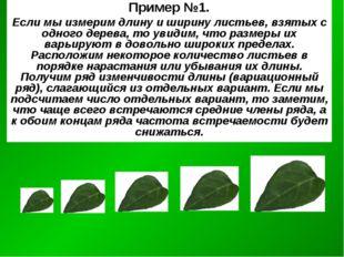 Пример №1. Если мы измерим длину и ширину листьев, взятых с одного дерева, то
