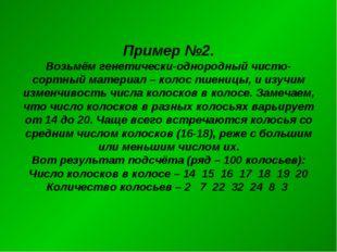 Пример №2. Возьмём генетически-однородный чисто-сортный материал – колос пшен