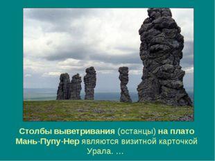 Столбы выветривания (останцы) на плато Мань-Пупу-Нер являются визитной карточ