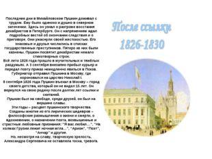 Последние дни в Михайловском Пушкин доживал с трудом. Ему было одиноко и душн