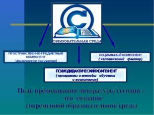 ПРОСТРАНСТВЕННО-ПРЕДМЕТНЫЙ КОМПОНЕНТ ( физическое окружение) СОЦИАЛЬНЫЙ КОМПО