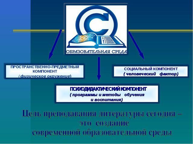 ПРОСТРАНСТВЕННО-ПРЕДМЕТНЫЙ КОМПОНЕНТ ( физическое окружение) СОЦИАЛЬНЫЙ КОМПО...