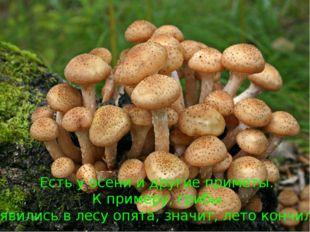 Есть у осени и другие приметы. К примеру, грибы. Появились в лесу опята, знач