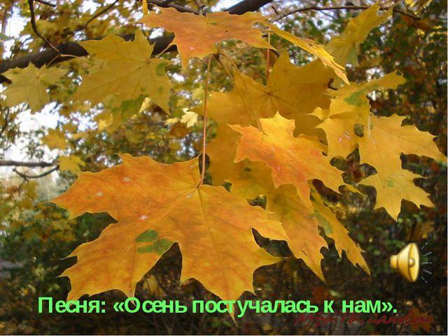 Песня: «Осень постучалась к нам».