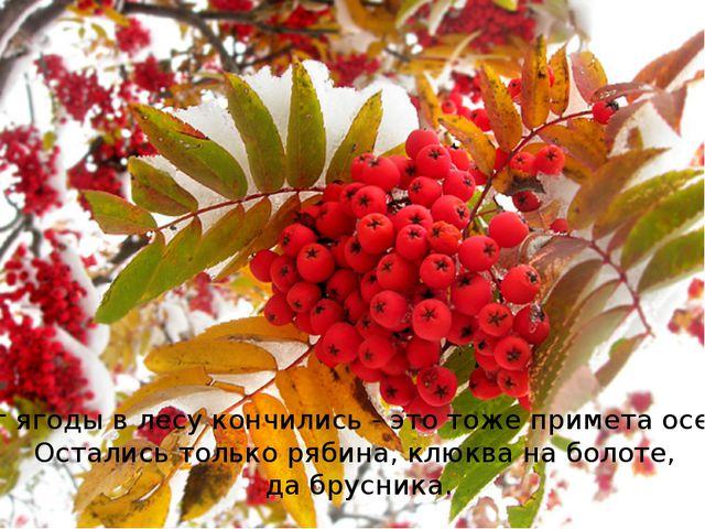 Вот ягоды в лесу кончились - это тоже примета осени. Остались только рябина,...