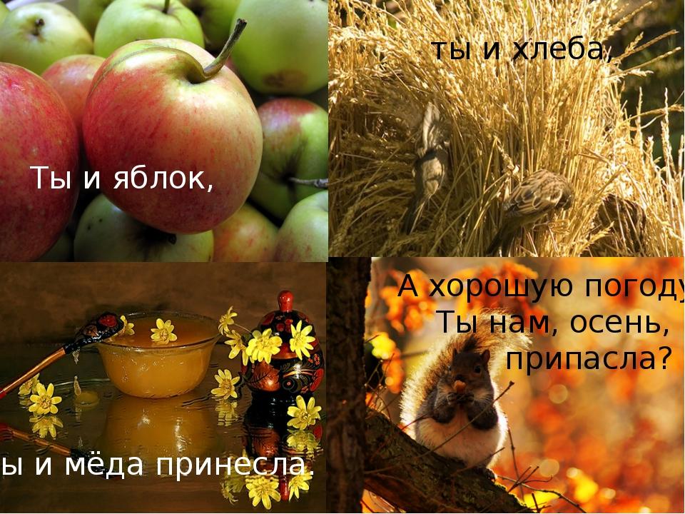 А хорошую погоду Ты нам, осень, припасла? Ты и яблок, ты и хлеба, Ты и мёда...