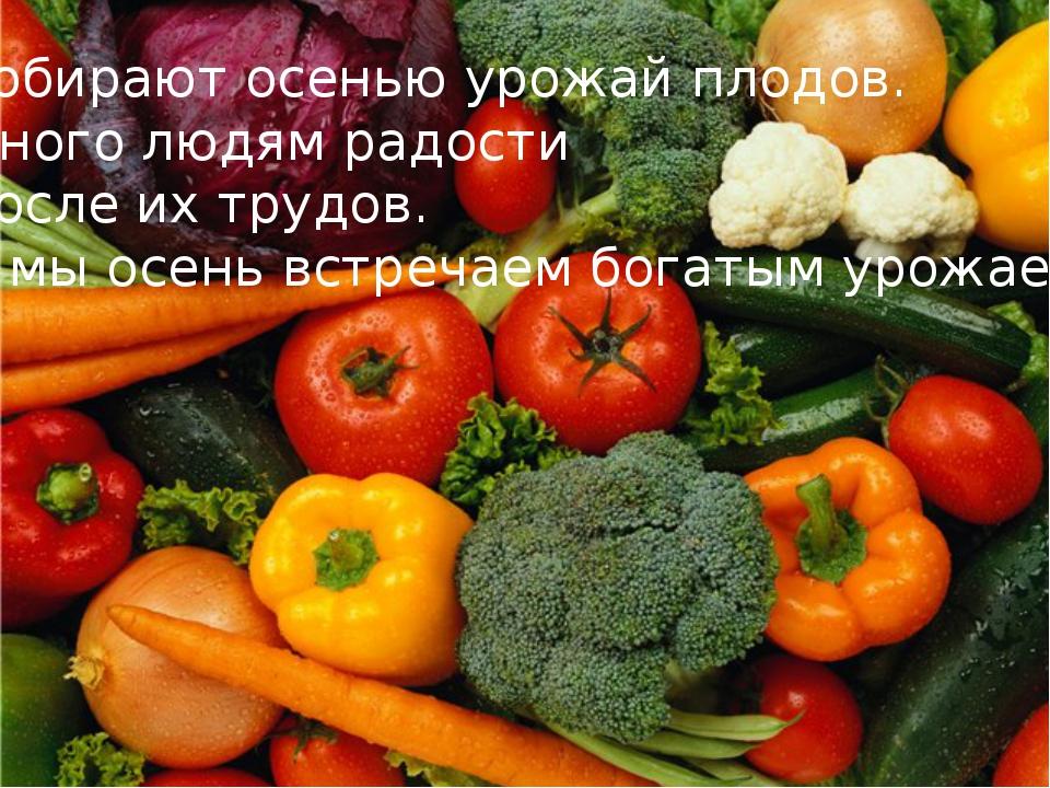 Собирают осенью урожай плодов. Много людям радости После их трудов. И мы осен...