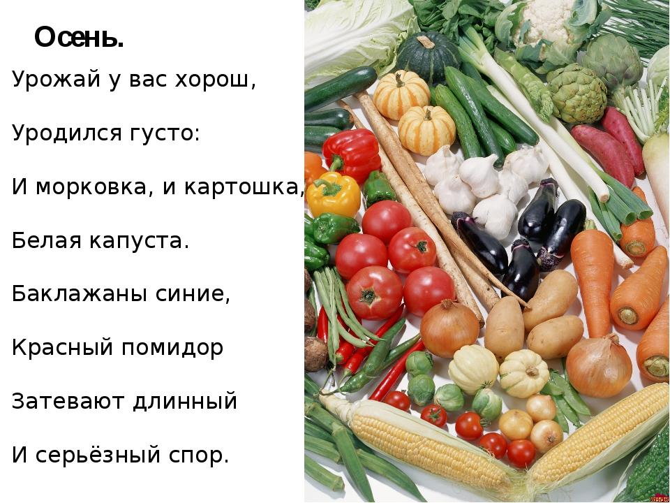 Урожай у вас хорош, Уродился густо: И морковка, и картошка, Белая капуста. Ба...