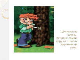 1.Деревья не калечь, ветки не ломай, кору на стволах деревьев не режь!