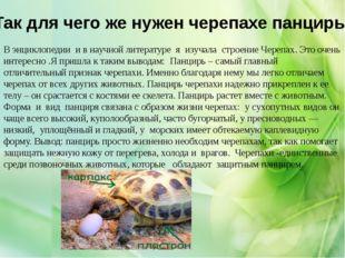 Так для чего же нужен черепахе панцирь: В энциклопедии и в научной литературе