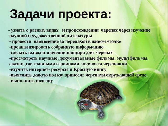 - узнать о разных видах и происхождении черепах через изучение научной и худ...