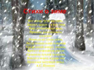Стихи о зиме Вот север, тучи нагоняя, Дохнул, завыл – и вот сама Идет волшебн
