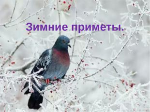 Зимние приметы.