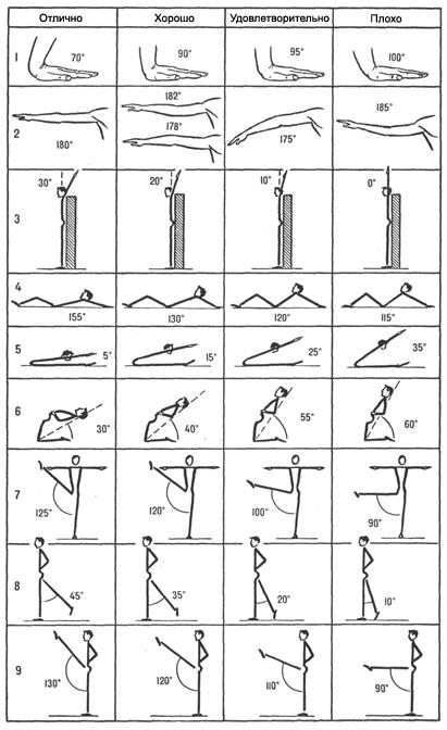 Оценка гибкости гимнастов-новичков
