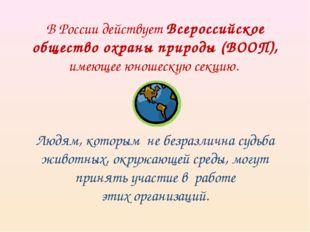 В России действует Всероссийское общество охраны природы (ВООП), имеющее юнош