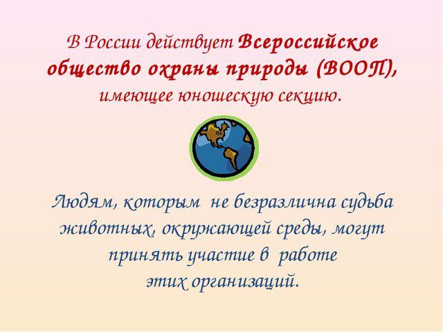 В России действует Всероссийское общество охраны природы (ВООП), имеющее юнош...