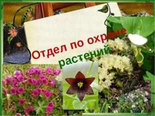 Отдел по охране растений