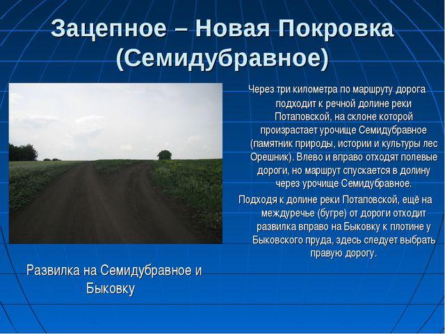 Зацепное – Новая Покровка (Семидубравное) Развилка на Семидубравное и Быковку...