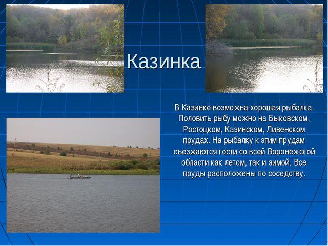 Казинка В Казинке возможна хорошая рыбалка. Половить рыбу можно на Быковском,...