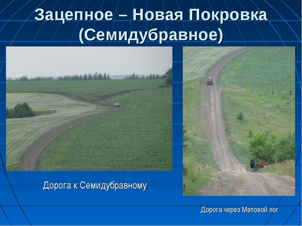 Зацепное – Новая Покровка (Семидубравное) Дорога через Меловой лог Дорога к...