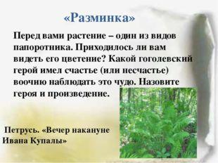 «Разминка» Перед вами растение – один из видов папоротника. Приходилось ли ва