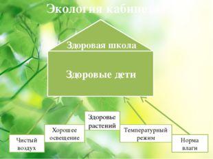 Экология кабинета Здоровье растений Чистый воздух Хорошее освещение Температу