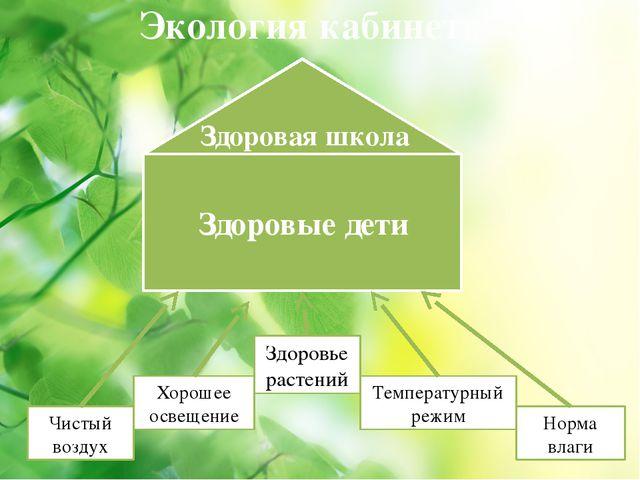 Экология кабинета Здоровье растений Чистый воздух Хорошее освещение Температу...