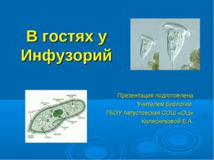 В гостях у Инфузорий Презентация подготовлена Учителем биологии ГБОУ Августов