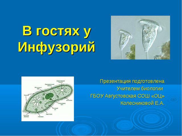 В гостях у Инфузорий Презентация подготовлена Учителем биологии ГБОУ Августов...