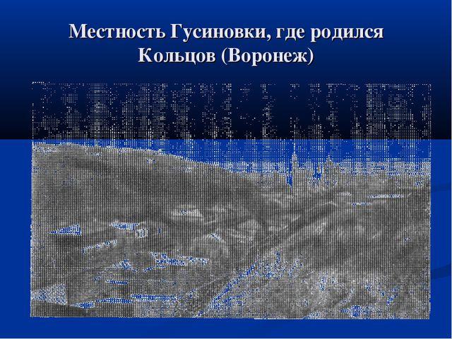 Местность Гусиновки, где родился Кольцов (Воронеж)