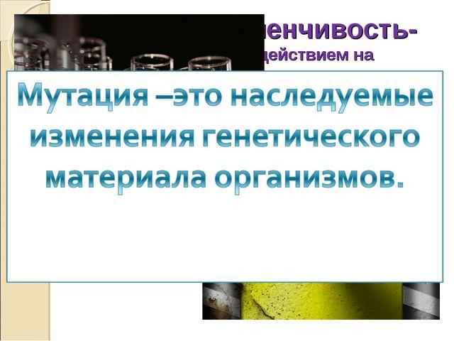 Мутационная изменчивость- изменчивость, вызванная действием на организм мутаг...