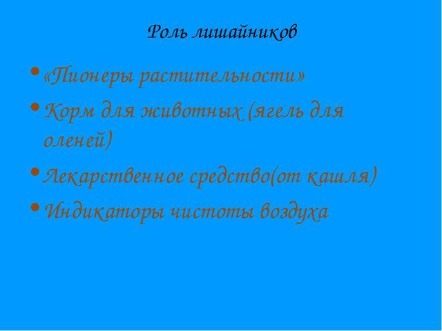 Роль лишайников «Пионеры растительности» Корм для животных (ягель для оленей)...