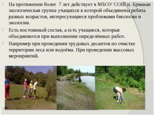 На протяжении более 7 лет действует в МБОУ СОШ п. Бриакан экологическая групп