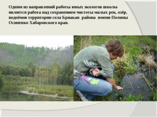 Одним из направлений работы юных экологов школы является работа над сохранени