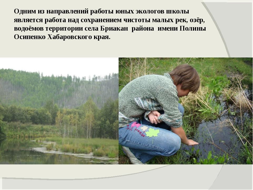 Одним из направлений работы юных экологов школы является работа над сохранени...