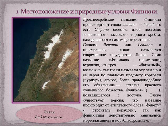 Древнееврейское название Финикии происходит от слова «лаван»— белый, то есть...