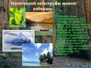 Сколько еще экологических бед сможет выдержать наша Матушка-Земля. Ведь все р