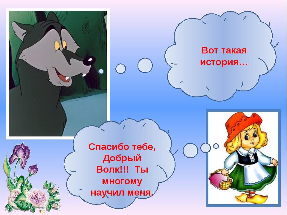 Вот такая история… Спасибо тебе, Добрый Волк!!! Ты многому научил меня.