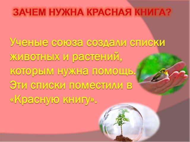 Ученые союза создали списки животных и растений, которым нужна помощь. Эти с...