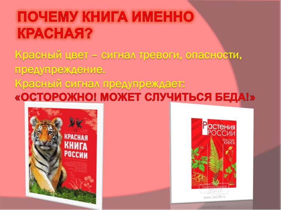 Красный цвет – сигнал тревоги, опасности, предупреждение. Красный сигнал пред...