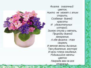 Фиалка сказочный цветок, Никто не может с этим спорить. Созданье дивной красо