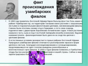 Исторический факт происхождения узамбарских фиалок В 1892 году правитель Вост