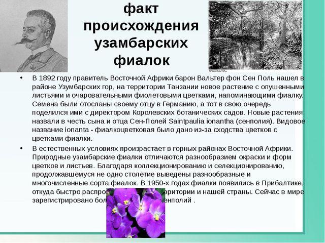 Исторический факт происхождения узамбарских фиалок В 1892 году правитель Вост...