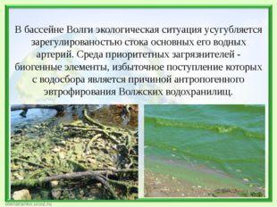 В бассейне Волги экологическая ситуация усугубляется зарегулированостью стока