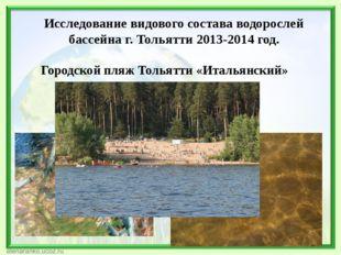 Исследование видового состава водорослей бассейна г. Тольятти 2013-2014 год.