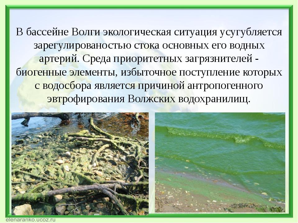 В бассейне Волги экологическая ситуация усугубляется зарегулированостью стока...