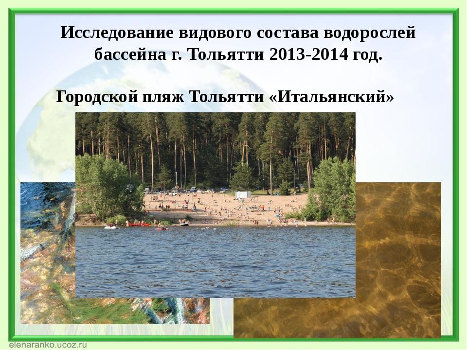 Исследование видового состава водорослей бассейна г. Тольятти 2013-2014 год....