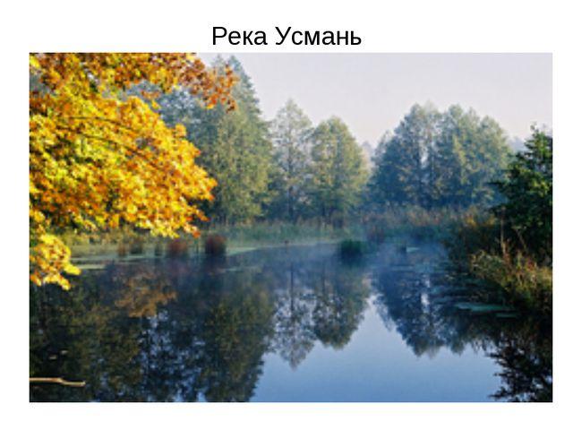 Река Усмань
