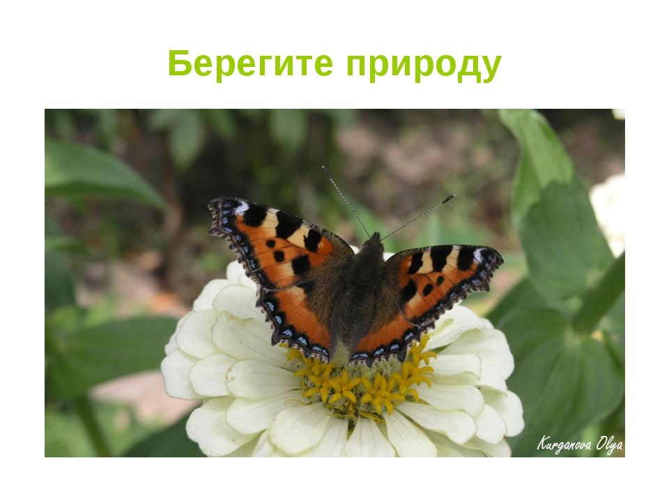 Берегите природу